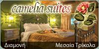 Ξενώνας Camelia